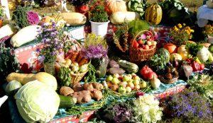 Русиново - праздник урожая